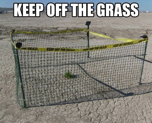 keep off the grass