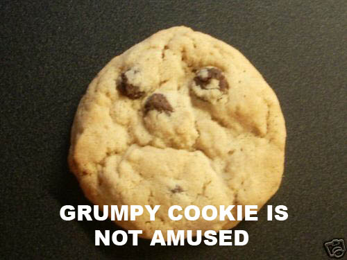 grumpy cookie is not amused - pichars.org