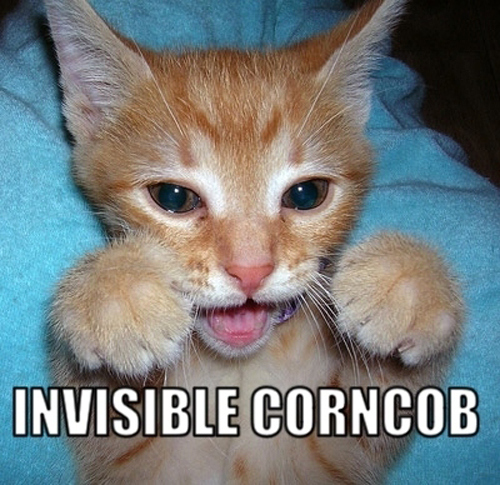 invisible corncob - pichars.org