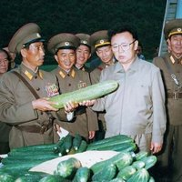 kim jong il looks at cucumbers