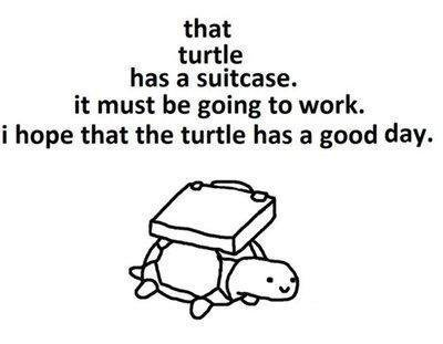 that turtle has a suitcase - pichars.org