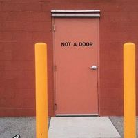 silly door